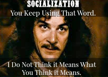 Socialization-Homeschooling-Peers-I-Do-Not-Think-it-Means-What-You-Think-it-Means